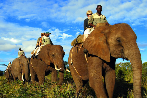 ZAMBEZI ELEPHANT TRAILS