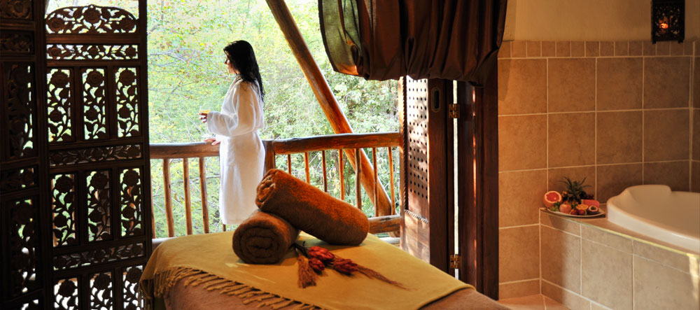 safpar-livingstone-accommodation-david-livingstone-safari-lodge-spa