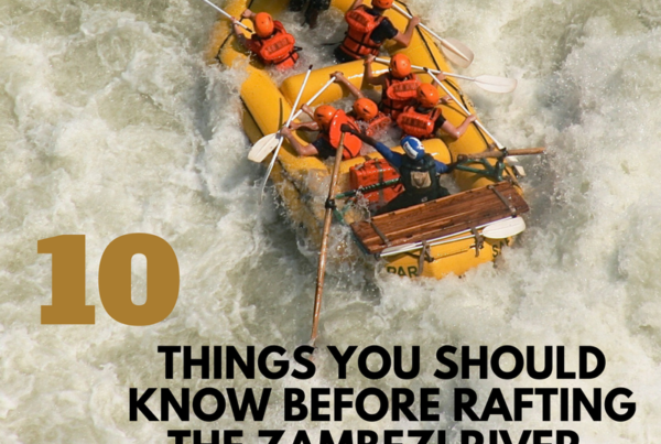 10 things you should Know about rafting the Zambezi River