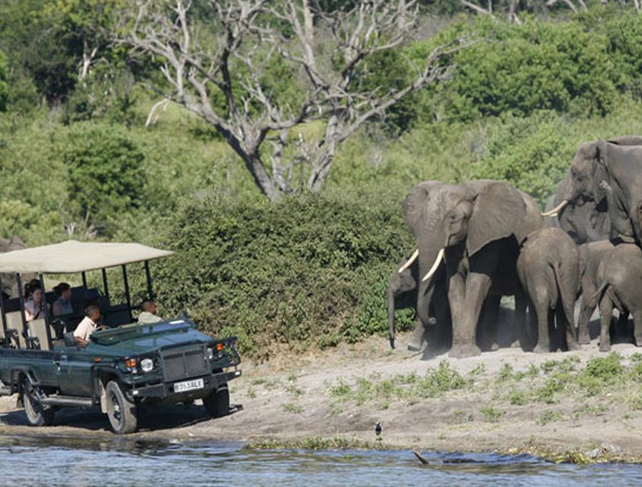 zambezi-river-rafting-special-8-night-ultimate