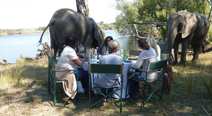 Lunch with elephants