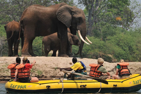 safpar-livingstone-activities-zambezi-raft-float-top