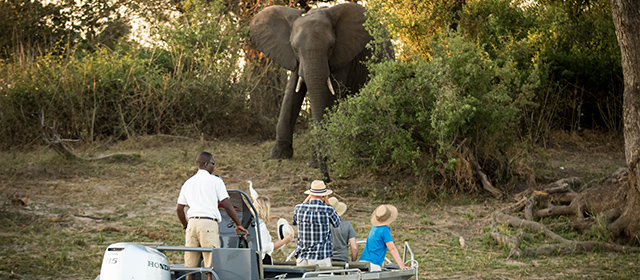 Safpar-Zambezi-Expeditions-Zambezi-River-Safari