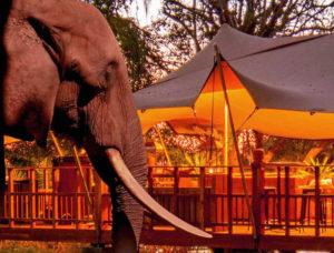 zambezi-river-rafting-special-8-night-ultimate-2