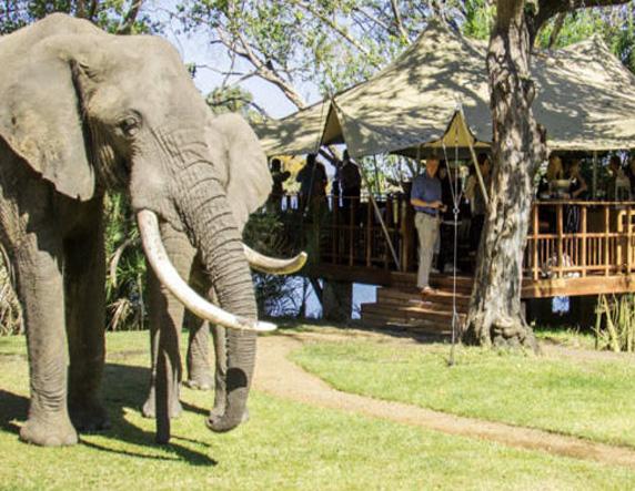 zambezi-river-rafting-special-8-night-ultimate-5