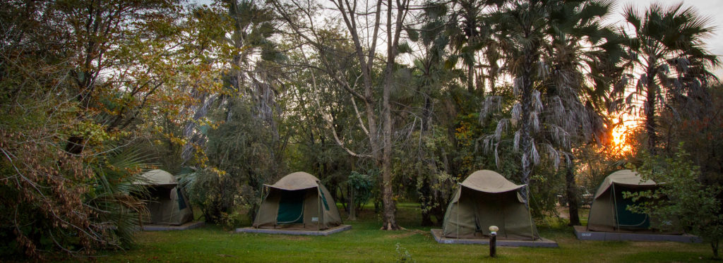 African safari tents