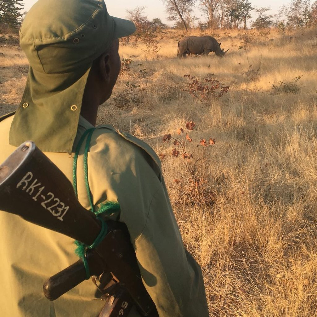 Armed gaurd watches the White Rhino on the upper Zambezi.