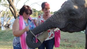 """""""Escapes"""" Prize winners in Livingstone Zambia the Victoria Falls."""