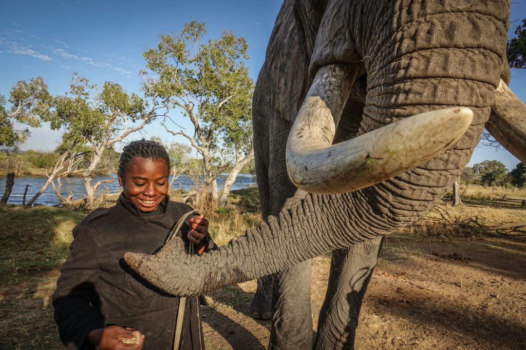Vulnerable children, Africa, African Elephant.