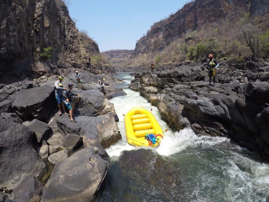 Rapid # &, the shoots, guide training.